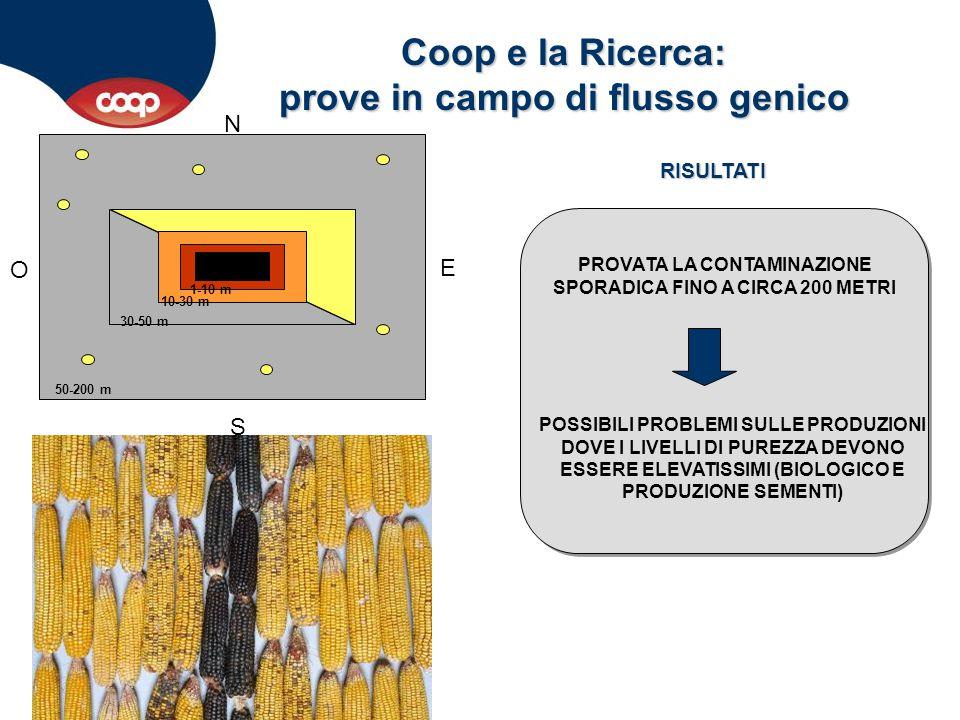 Coop e la Ricerca: prove in campo di flusso genico