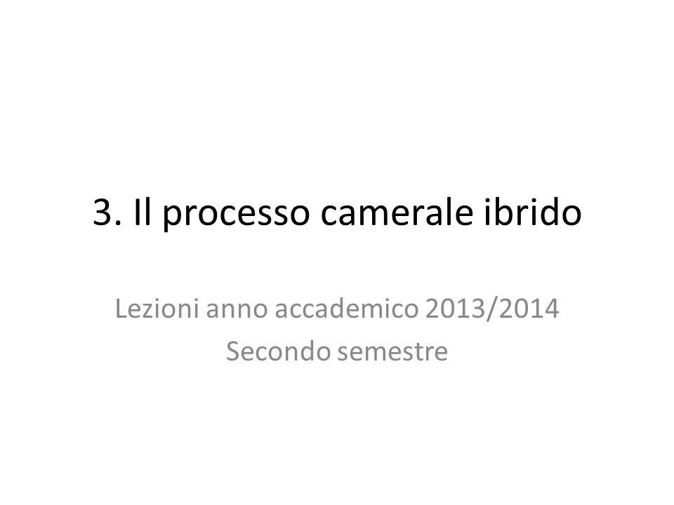 3. Il processo camerale ibrido
