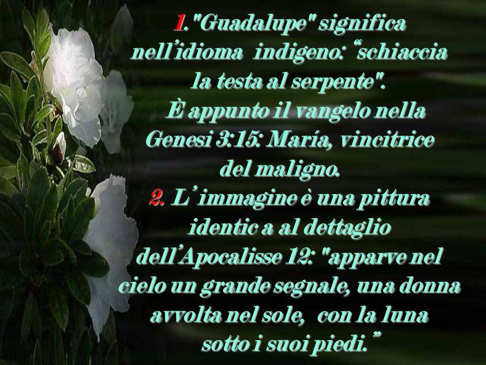 1. Guadalupe significa nell'idioma indigeno: schiaccia