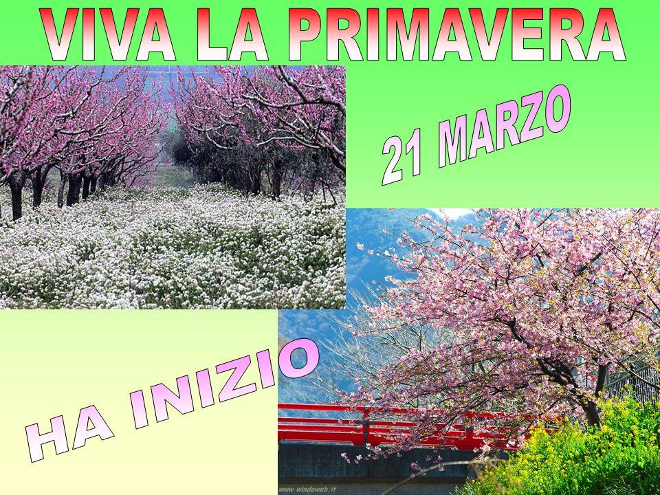 VIVA LA PRIMAVERA 21 MARZO HA INIZIO