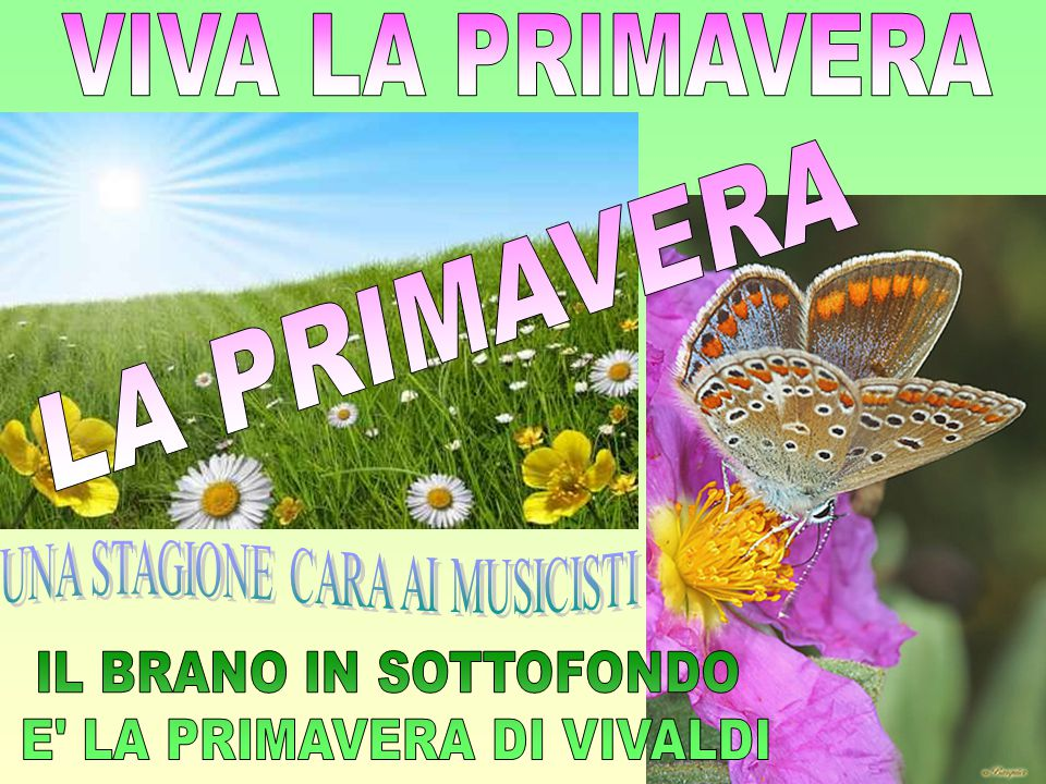 VIVA LA PRIMAVERA LA PRIMAVERA UNA STAGIONE CARA AI MUSICISTI