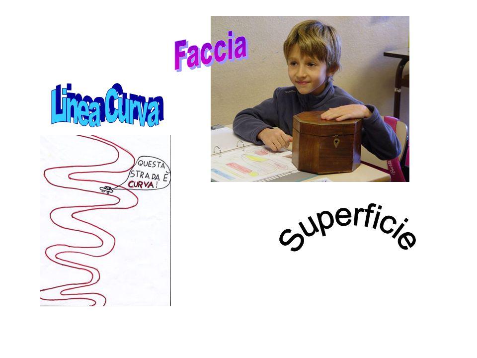 Faccia Linea Curva Superficie