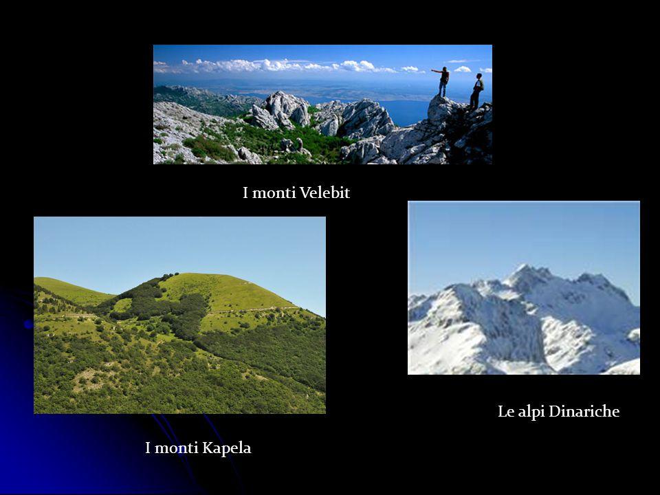 I monti Velebit Le alpi Dinariche I monti Kapela