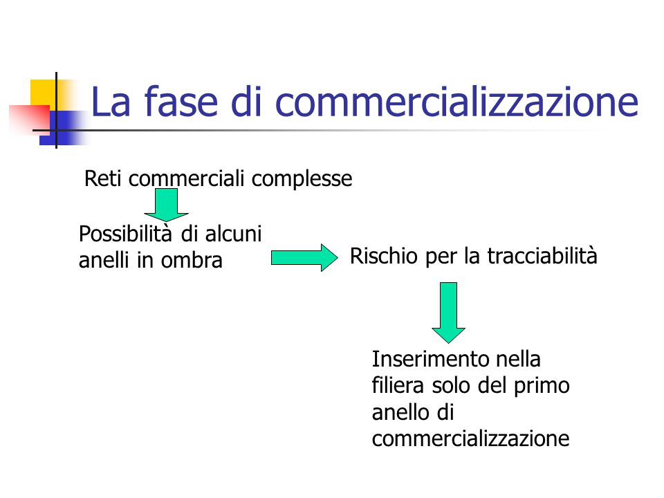 La fase di commercializzazione