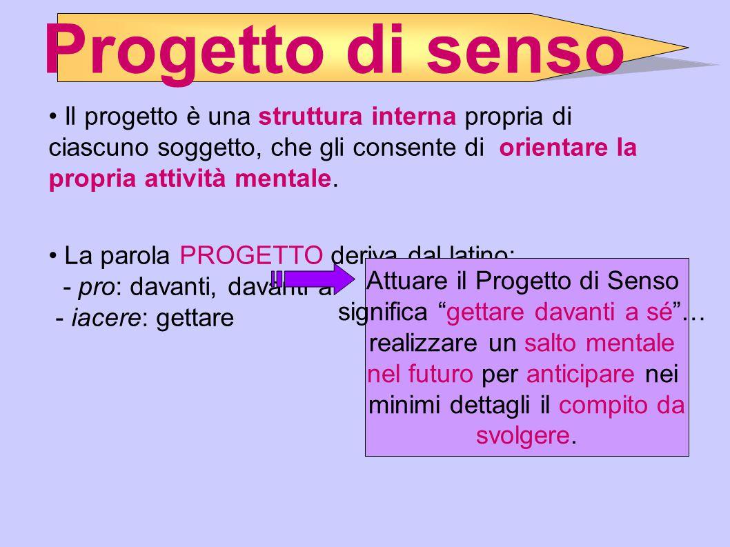 Progetto di senso Il progetto è una struttura interna propria di ciascuno soggetto, che gli consente di orientare la propria attività mentale.