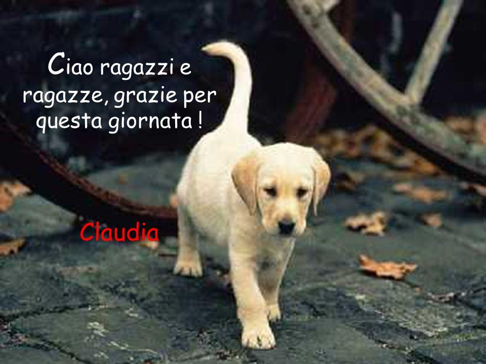 Ciao ragazzi e ragazze, grazie per questa giornata ! Claudia