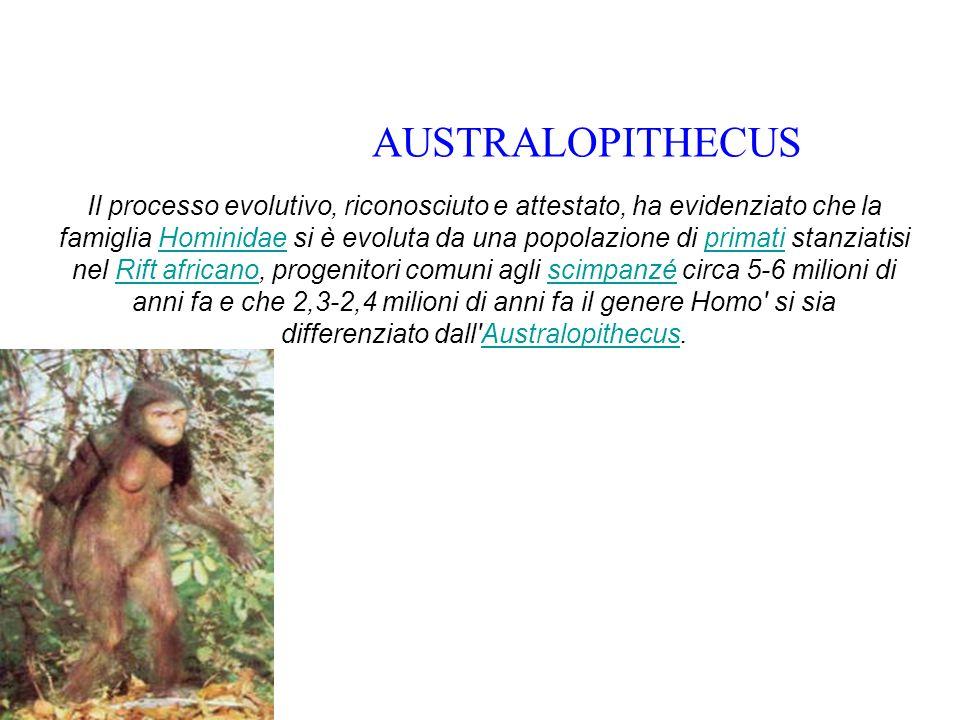 Il processo evolutivo, riconosciuto e attestato, ha evidenziato che la famiglia Hominidae si è evoluta da una popolazione di primati stanziatisi nel Rift africano, progenitori comuni agli scimpanzé circa 5-6 milioni di anni fa e che 2,3-2,4 milioni di anni fa il genere Homo si sia differenziato dall Australopithecus.