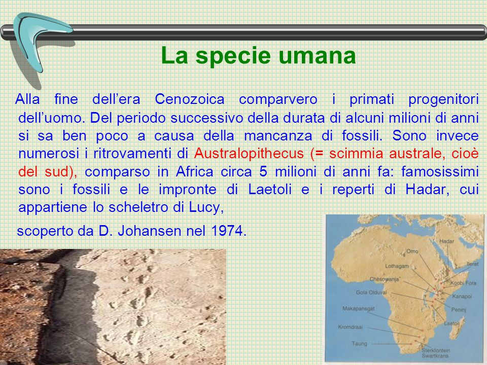 Alla fine dell'era Cenozoica comparvero i primati progenitori dell'uomo. Del periodo successivo della durata di alcuni milioni di anni si sa ben poco a causa della mancanza di fossili. Sono invece numerosi i ritrovamenti di Australopithecus (= scimmia australe, cioè del sud), comparso in Africa circa 5 milioni di anni fa: famosissimi sono i fossili e le impronte di Laetoli e i reperti di Hadar, cui appartiene lo scheletro di Lucy,