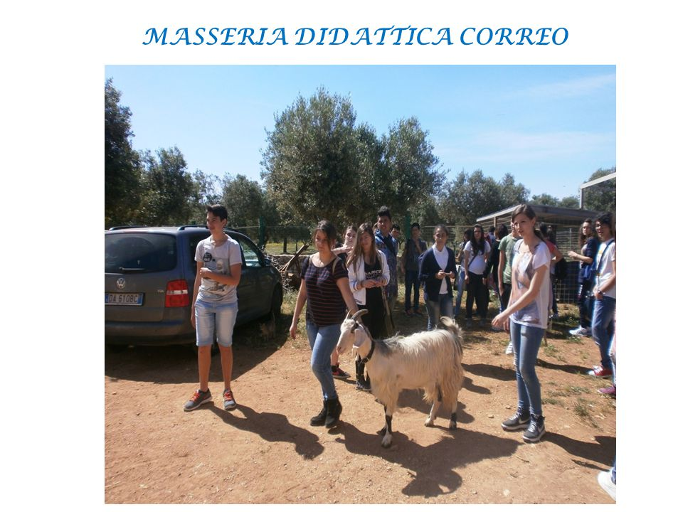 MASSERIA DIDATTICA CORREO