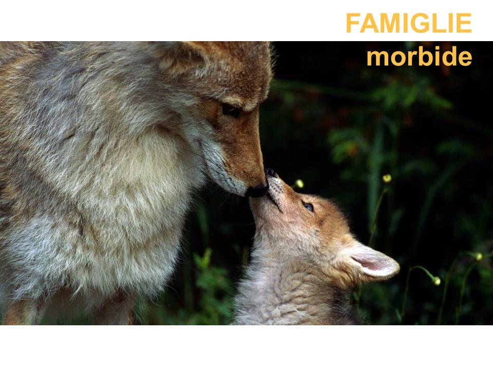 FAMIGLIE morbide