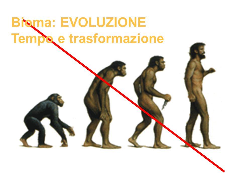 Bioma: EVOLUZIONE Tempo e trasformazione