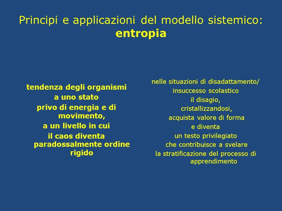Principi e applicazioni del modello sistemico: entropia