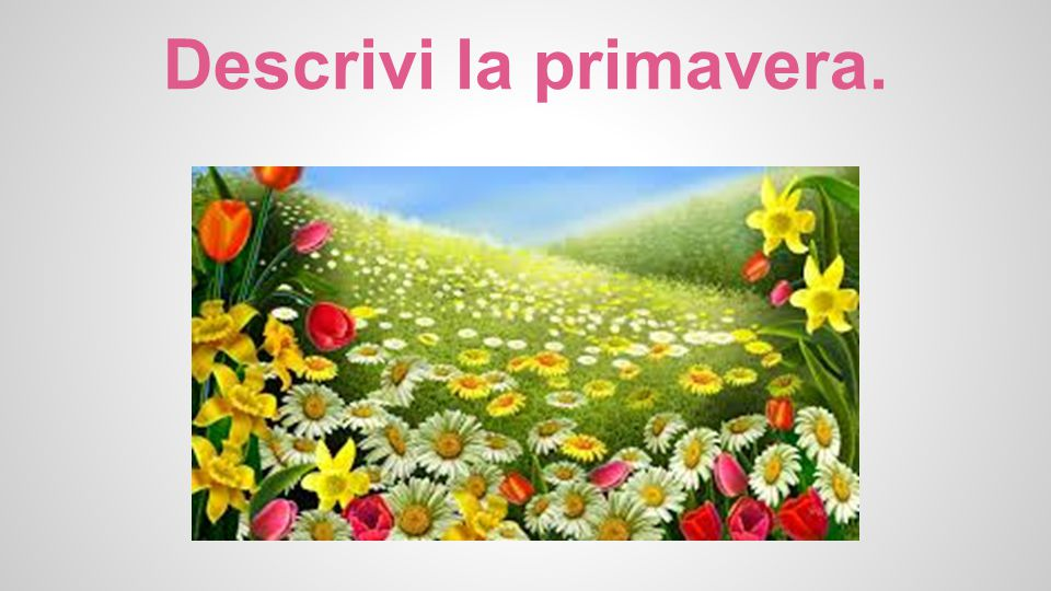 Descrivi la primavera.