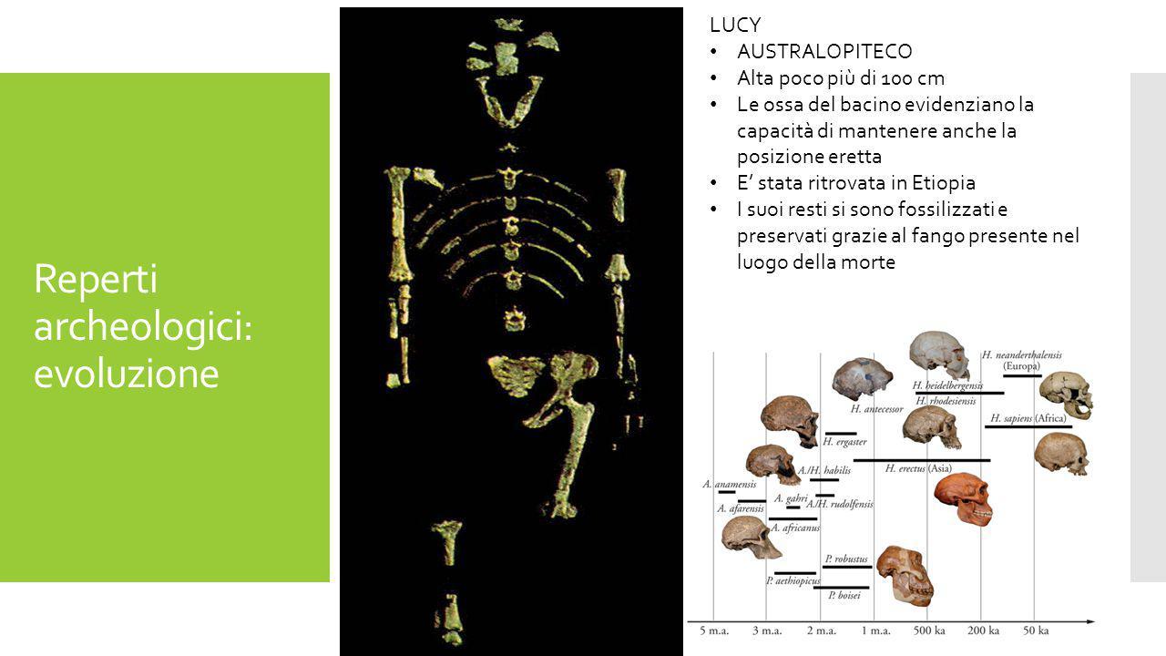 Reperti archeologici: evoluzione