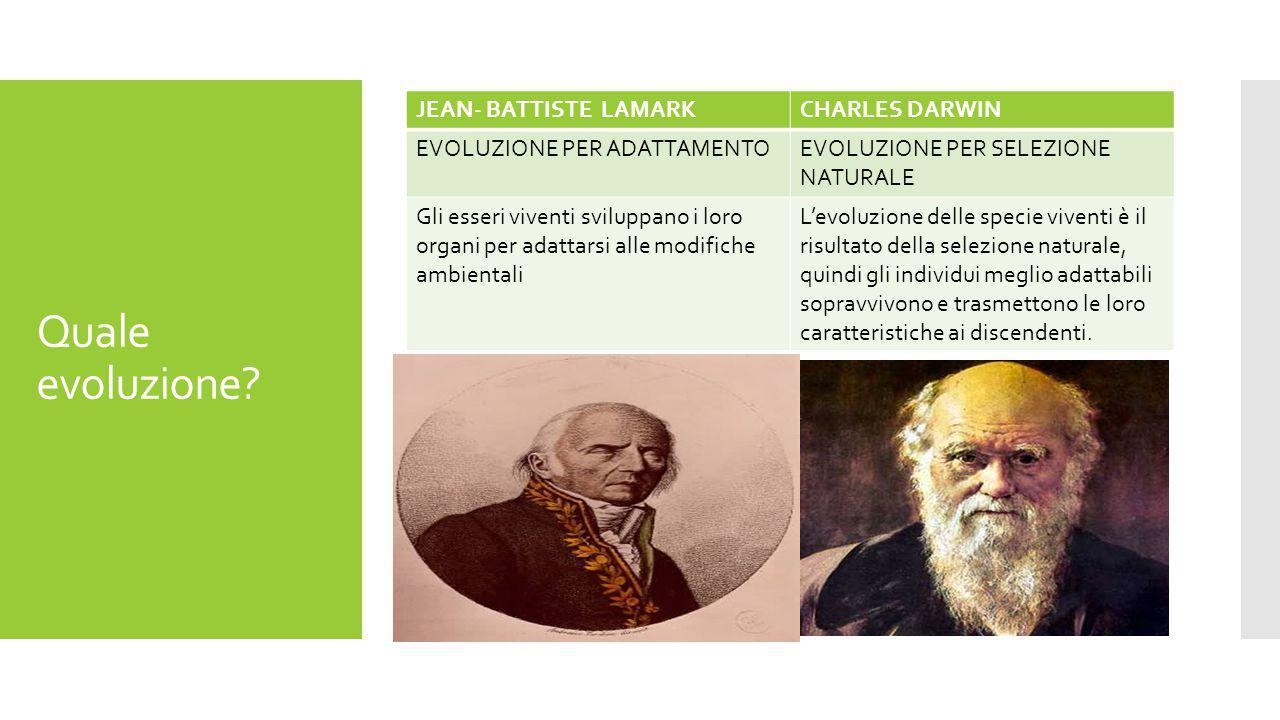 Quale evoluzione JEAN- BATTISTE LAMARK CHARLES DARWIN