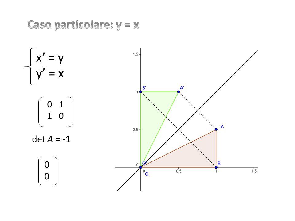 Caso particolare: y = x x' = y y' = x 0 1 1 0 det A = -1