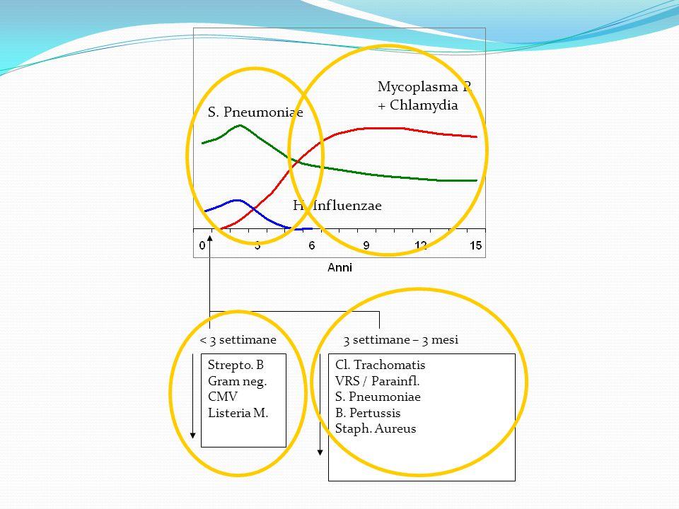 Mycoplasma P. + Chlamydia S. Pneumoniae H. Influenzae Strepto. B