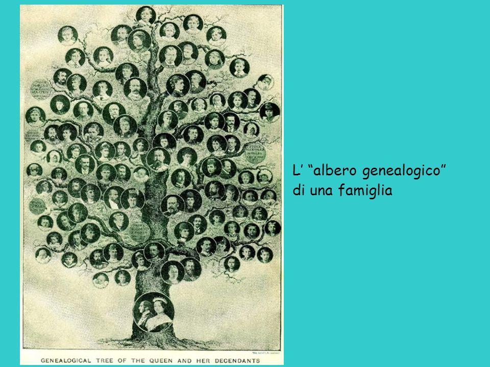 L' albero genealogico