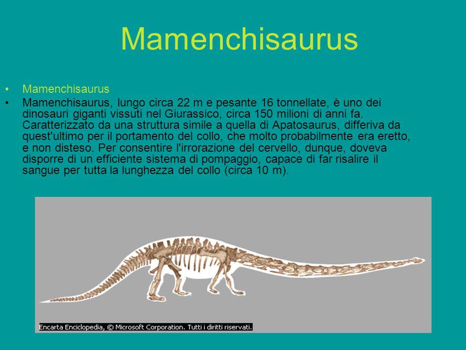 Mamenchisaurus Mamenchisaurus