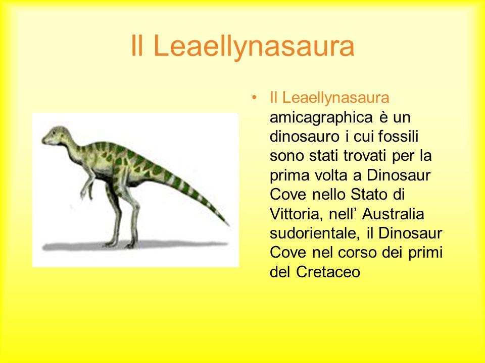 Il Leaellynasaura