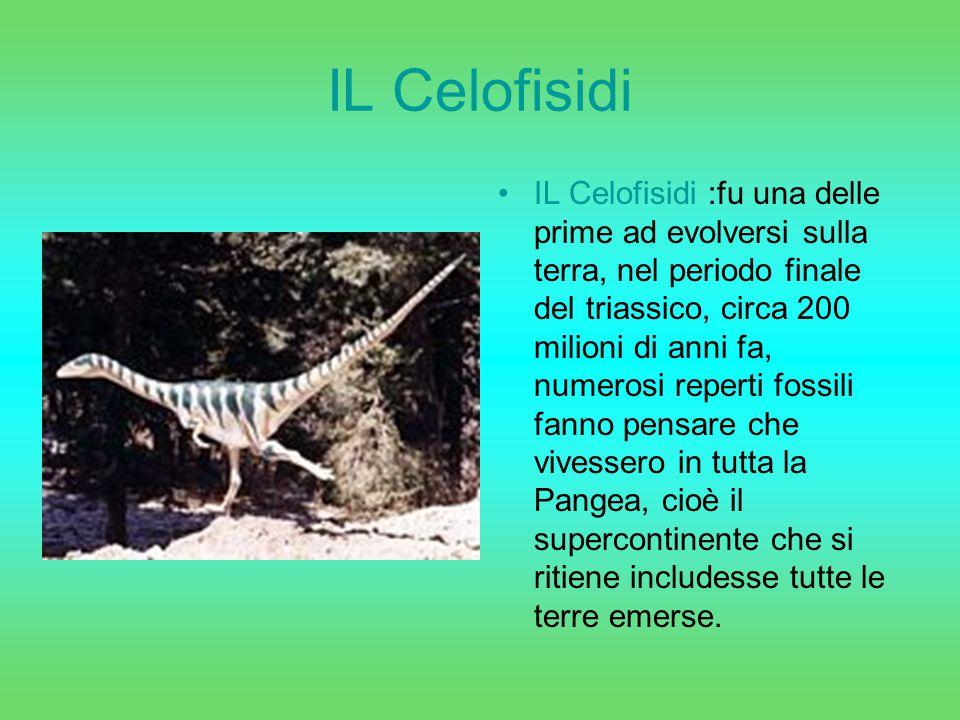 IL Celofisidi