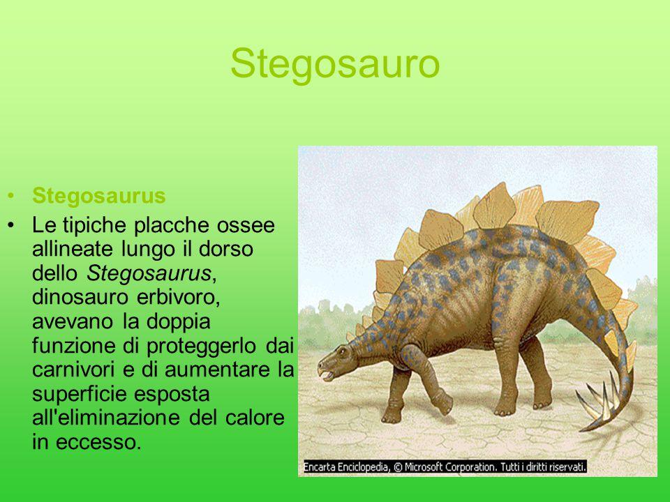 Stegosauro Stegosaurus
