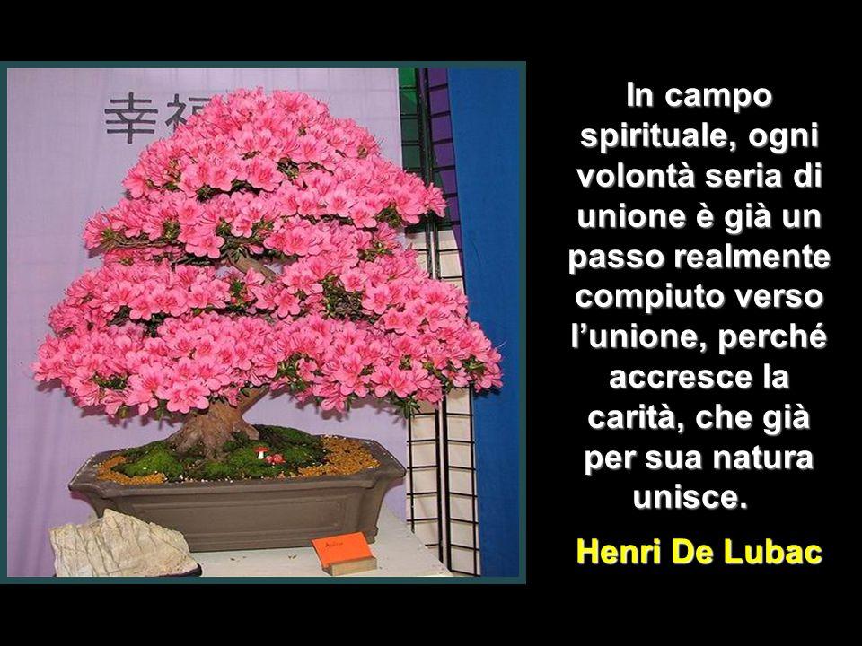 In campo spirituale, ogni volontà seria di unione è già un passo realmente compiuto verso l'unione, perché accresce la carità, che già per sua natura unisce.