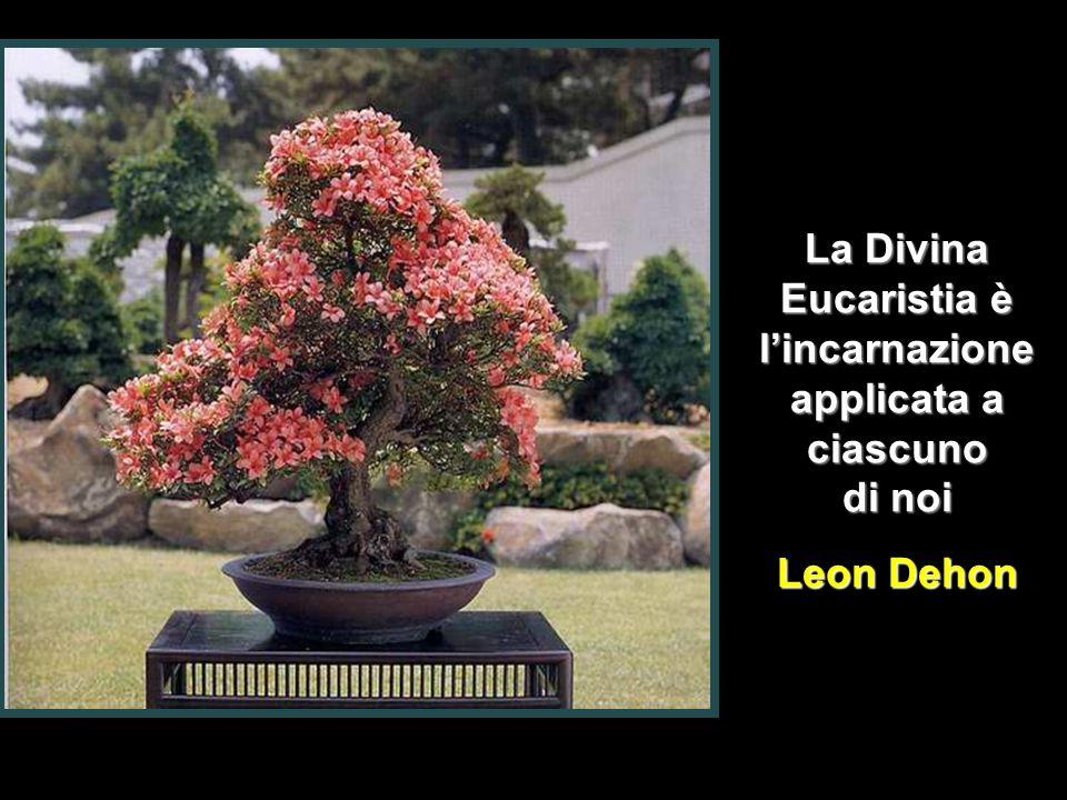 La Divina Eucaristia è l'incarnazione applicata a ciascuno di noi