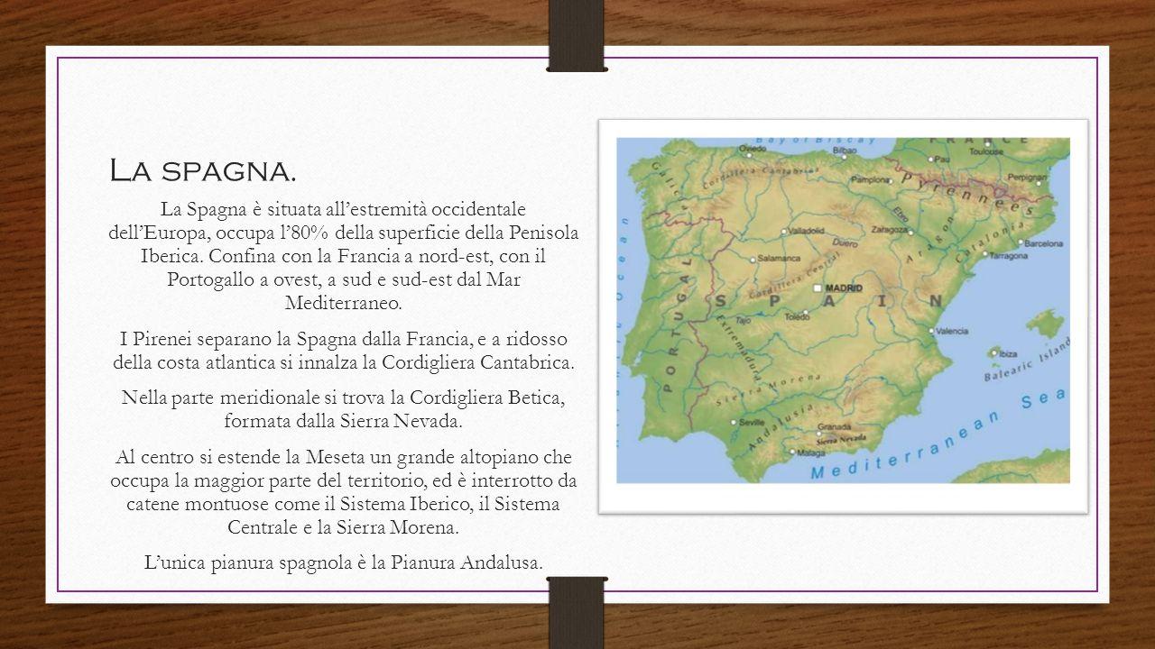 L'unica pianura spagnola è la Pianura Andalusa.