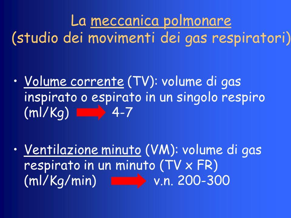 La meccanica polmonare (studio dei movimenti dei gas respiratori)