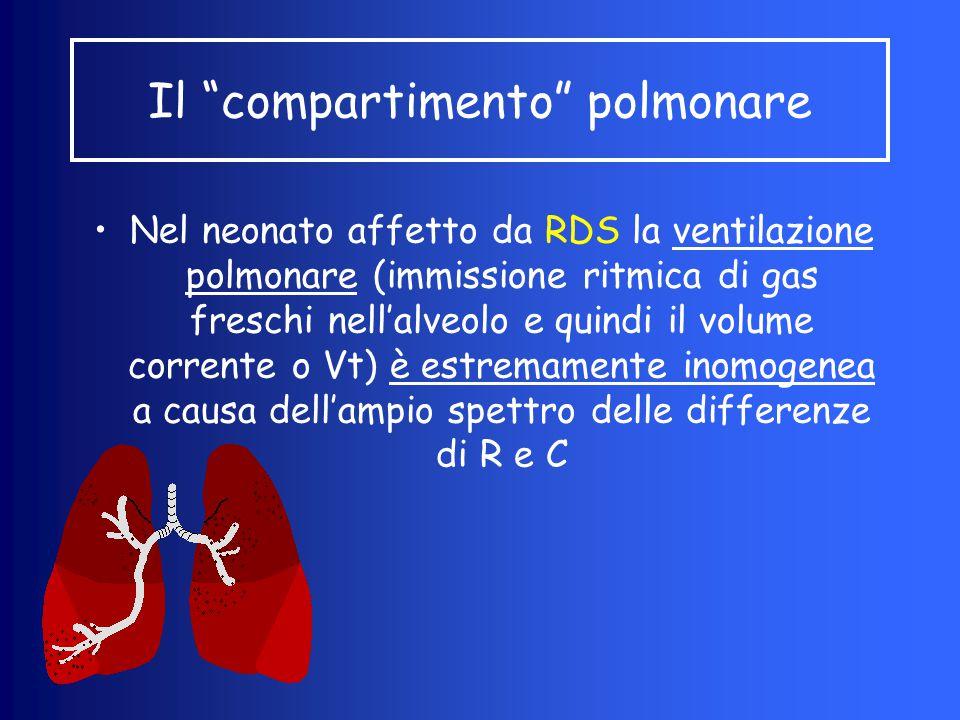 Il compartimento polmonare