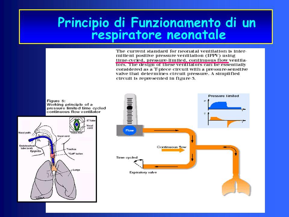Principio di Funzionamento di un respiratore neonatale