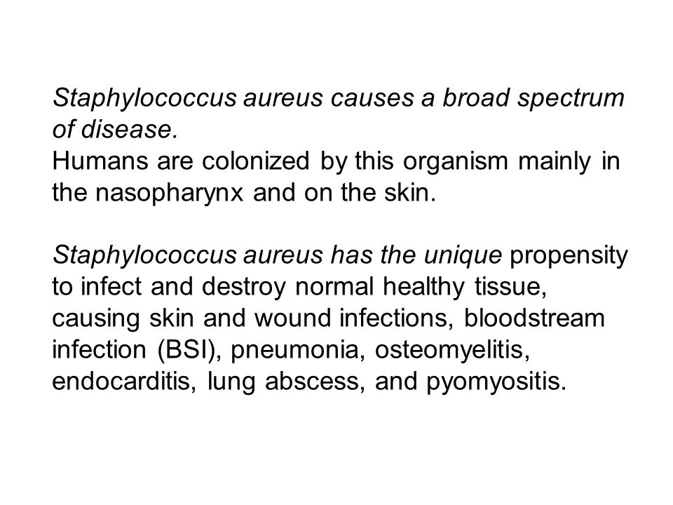 Staphylococcus aureus causes a broad spectrum of disease.