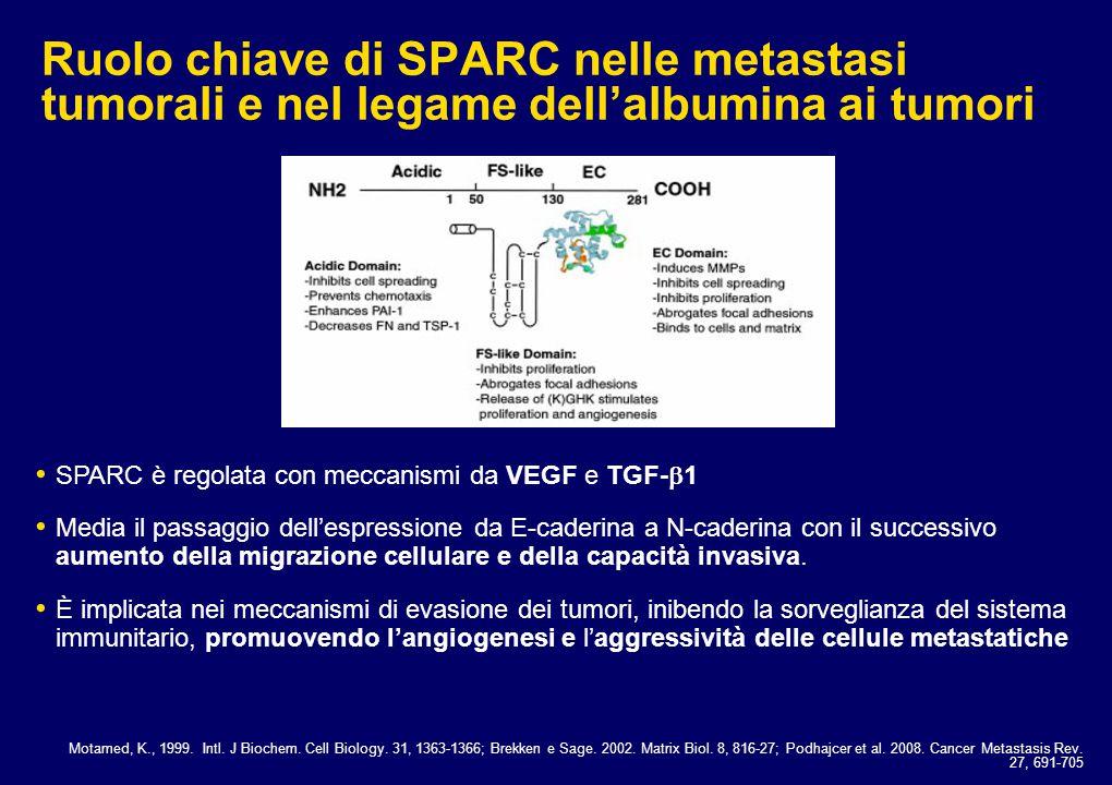 Ruolo chiave di SPARC nelle metastasi tumorali e nel legame dell'albumina ai tumori