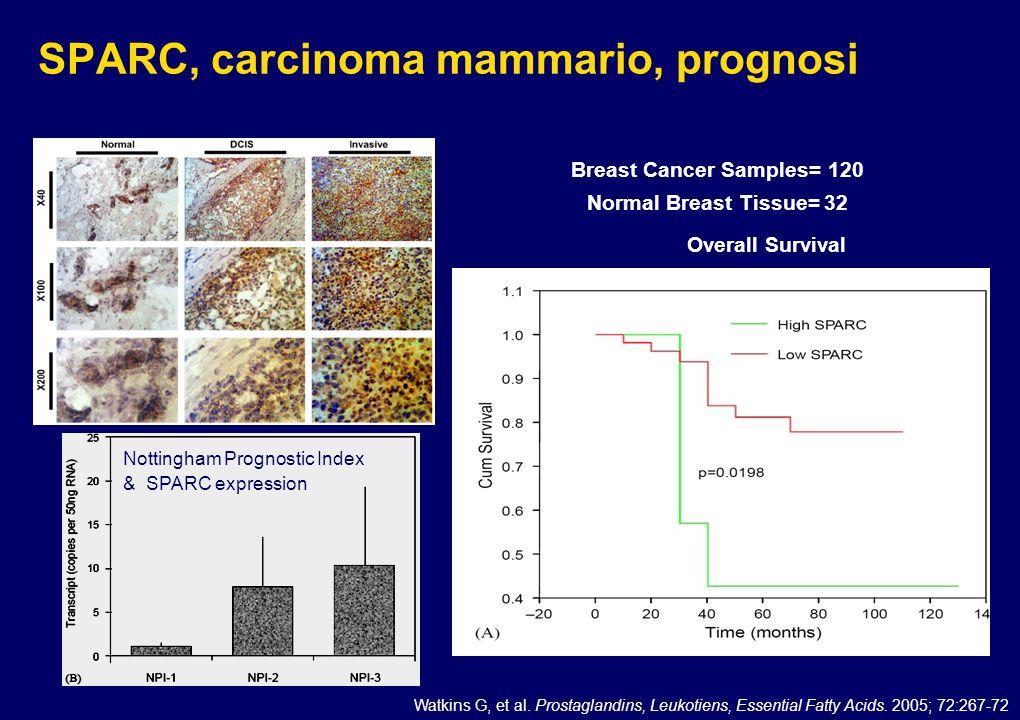 SPARC, carcinoma mammario, prognosi