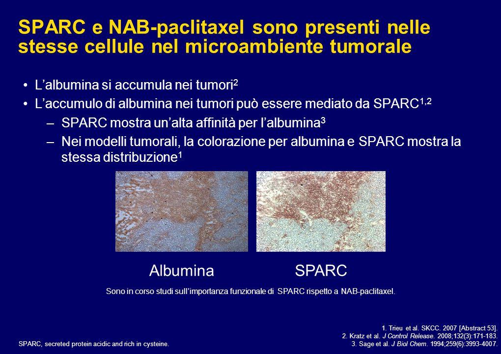 SPARC e NAB-paclitaxel sono presenti nelle stesse cellule nel microambiente tumorale