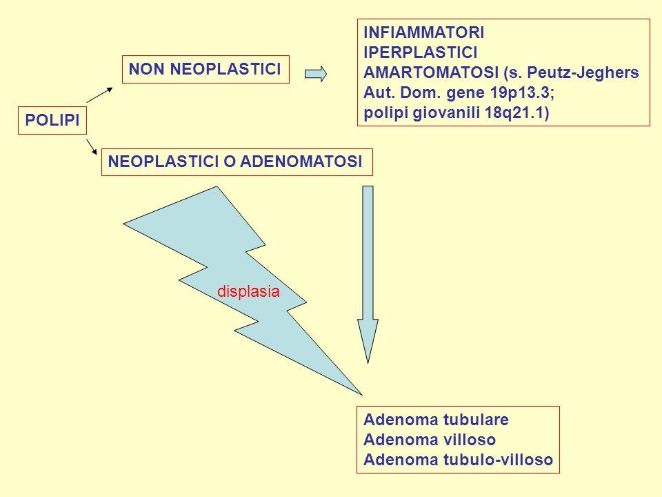 INFIAMMATORI IPERPLASTICI. AMARTOMATOSI (s. Peutz-Jeghers. Aut. Dom. gene 19p13.3; polipi giovanili 18q21.1)