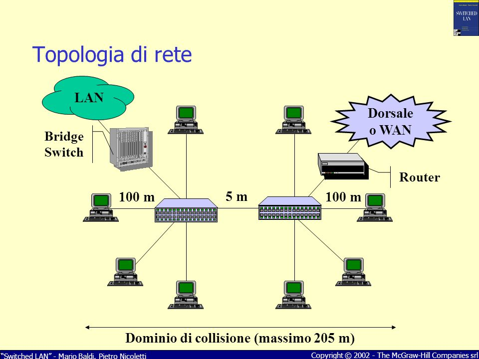 Topologia di rete LAN Dorsale o WAN 100 m 5 m 100 m
