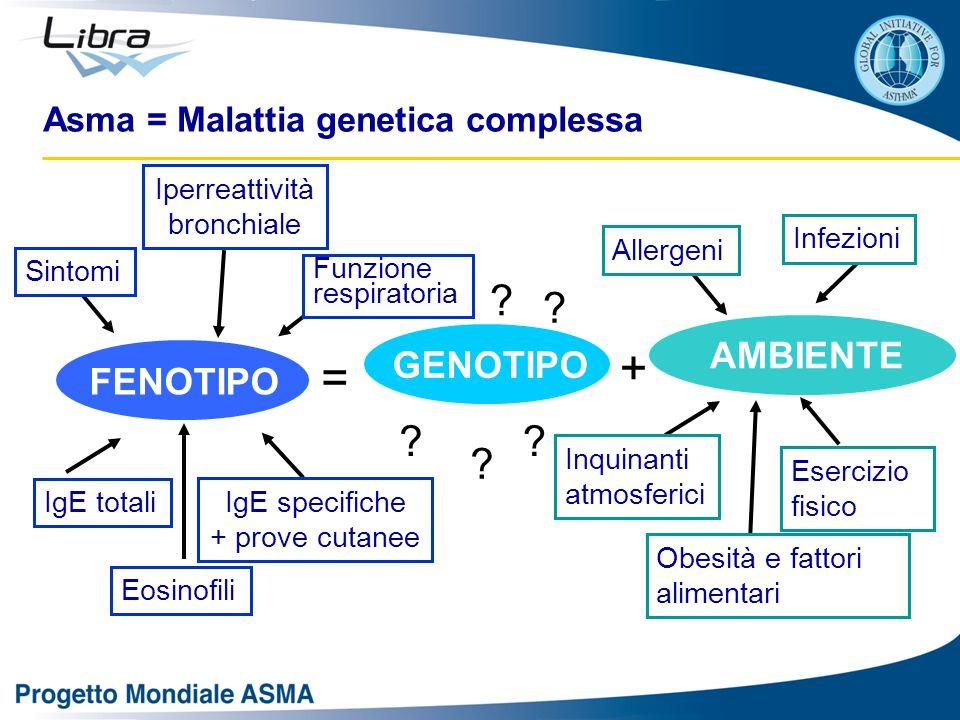 + = AMBIENTE GENOTIPO FENOTIPO