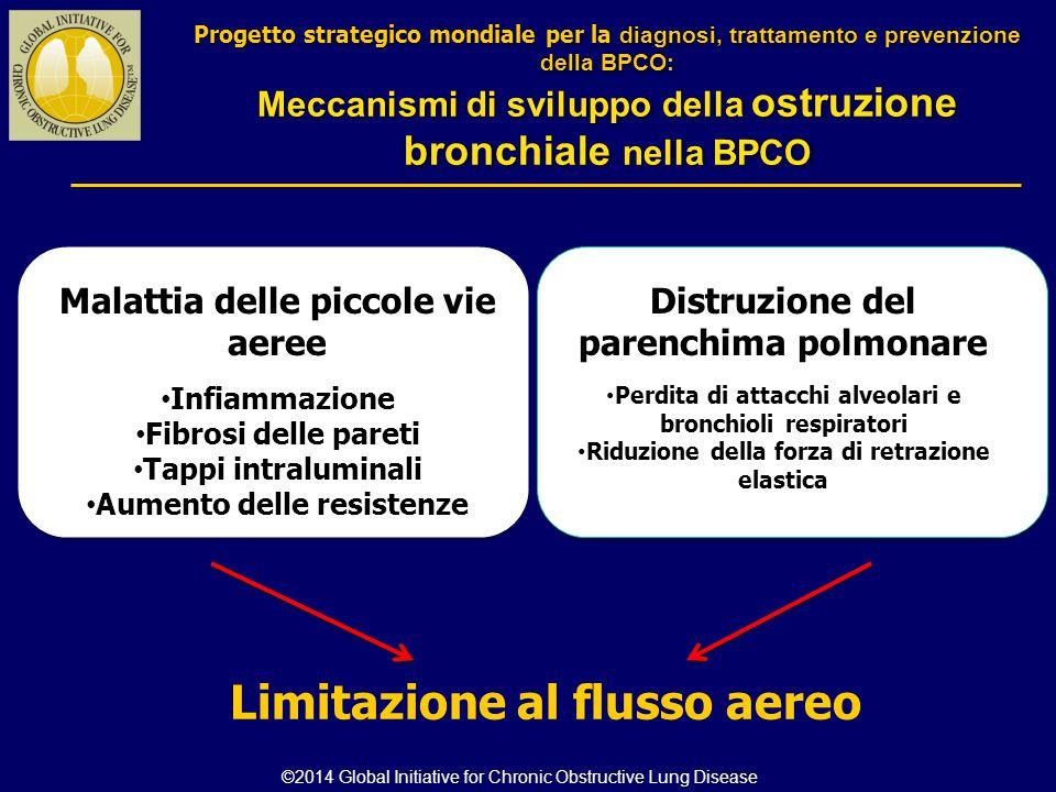 Meccanismi di sviluppo della ostruzione bronchiale nella BPCO