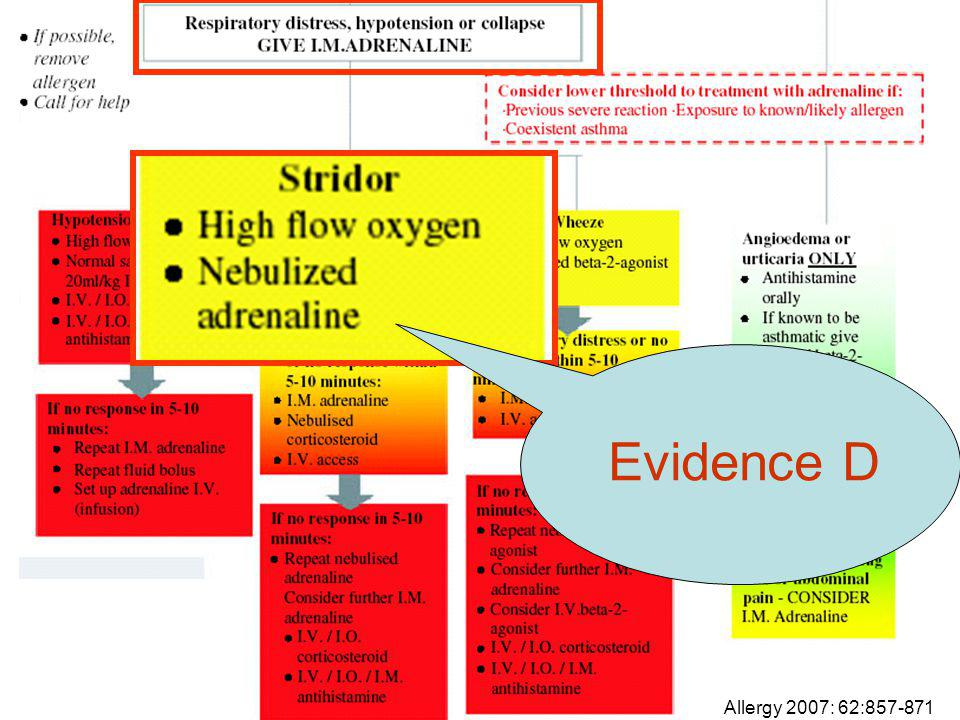 Evidence D Allergy 2007: 62:857-871