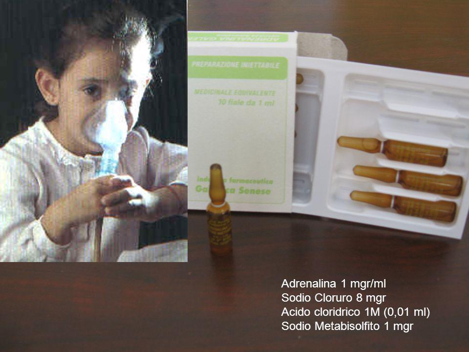 Adrenalina 1 mgr/ml Sodio Cloruro 8 mgr Acido cloridrico 1M (0,01 ml) Sodio Metabisolfito 1 mgr