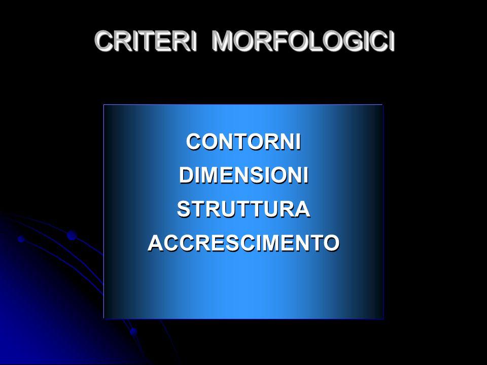 CRITERI MORFOLOGICI CONTORNI DIMENSIONI STRUTTURA ACCRESCIMENTO 16