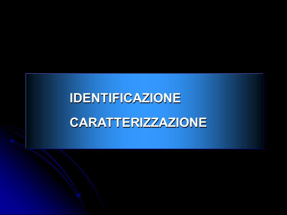 IDENTIFICAZIONE CARATTERIZZAZIONE 2