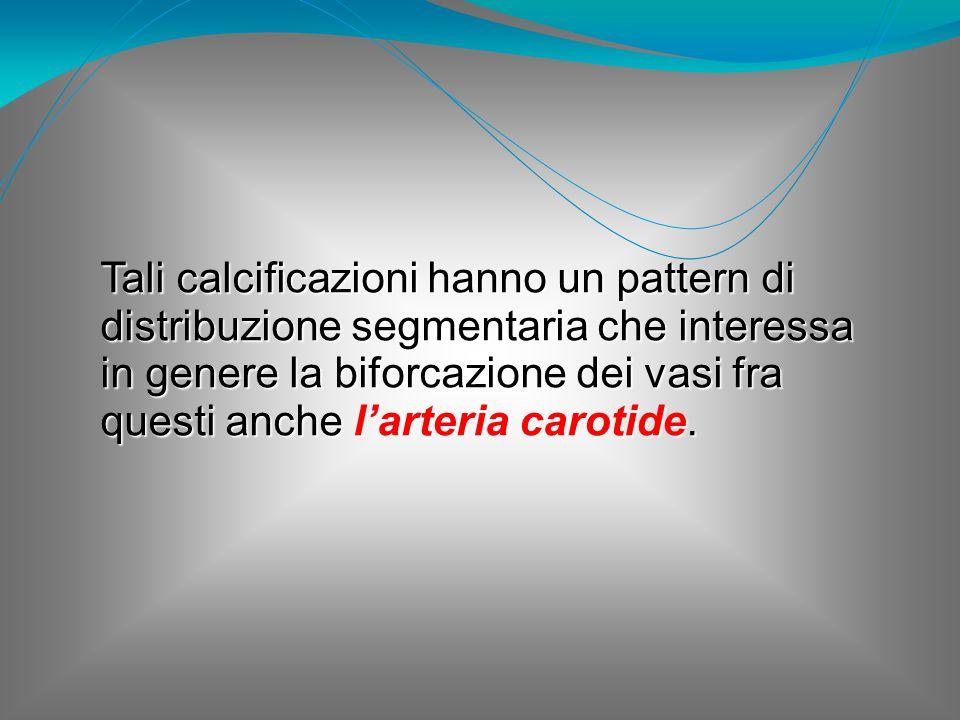 Tali calcificazioni hanno un pattern di distribuzione segmentaria che interessa in genere la biforcazione dei vasi fra questi anche l'arteria carotide.