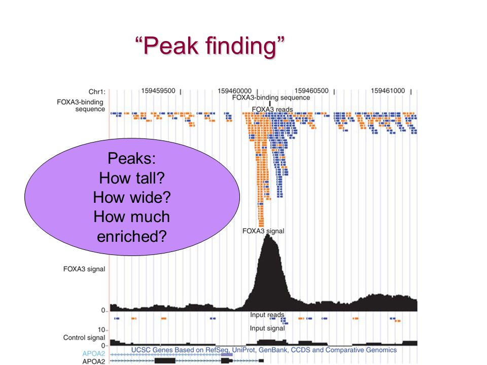 Peak finding Peaks: How tall How wide How much enriched
