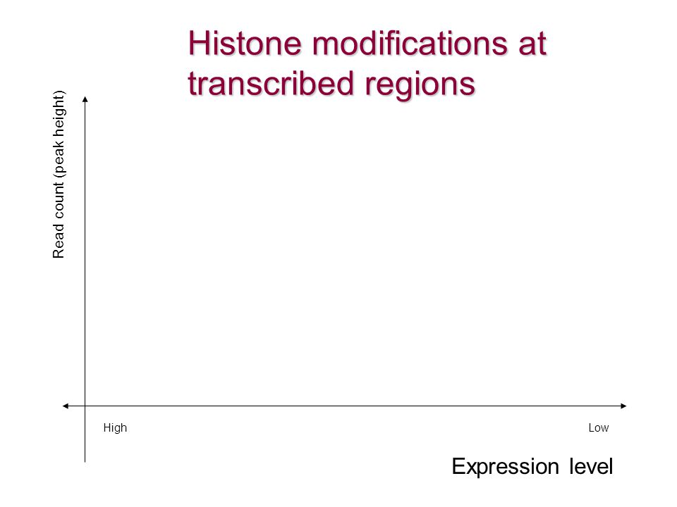 Histone modifications at transcribed regions