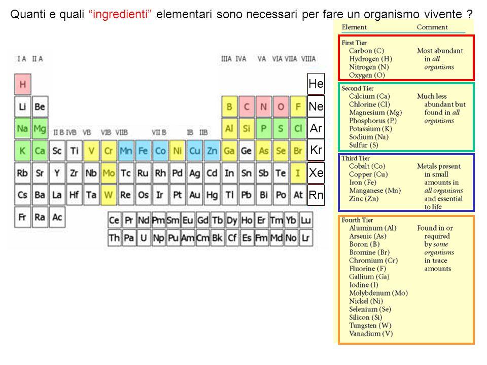 Quanti e quali ingredienti elementari sono necessari per fare un organismo vivente