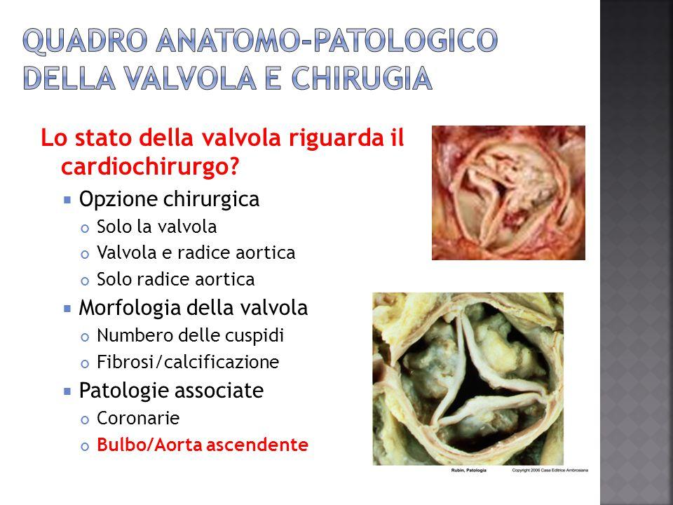 Quadro anatomo-patologico della valvola e chirugia