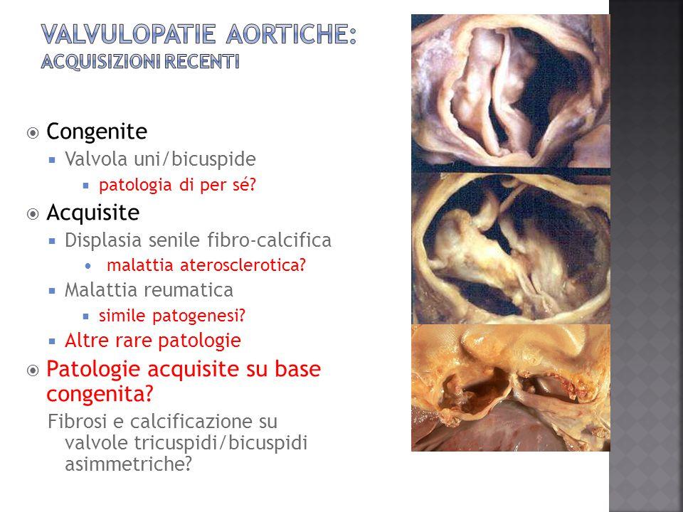 valvulopatie aortiche: